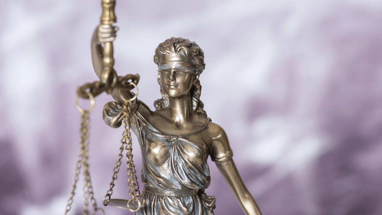 Déroulement du litige
